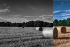 Adobe Photoshop CS6 Tutorial – How To Colorize Black And White Picture