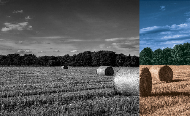 Adobe Photoshop CS6 Tutorial - How To Colorize Black And White Picture